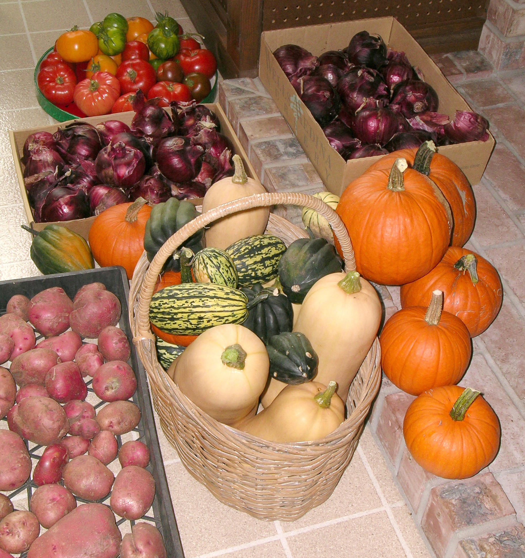 P Patch Produce Including Tomatoes Red Onions Potatoes Pumpkins Winter Squashes Sept 2007 By MCM
