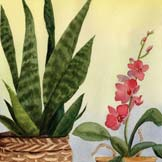 Physiology of Higher Plants: An Outline (2008; Orchid and sansevieria painting by RCM)